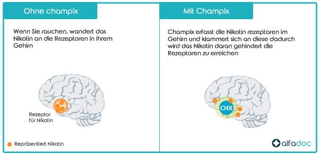 Wie-funktioniert-Champix-Vareniclin
